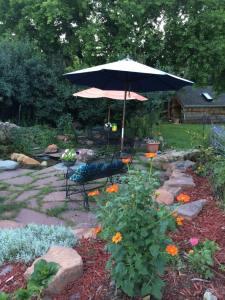 More Summer garden