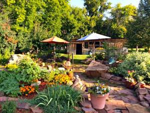 Summer flower garden and shed
