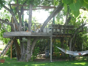 Treehouse in summer
